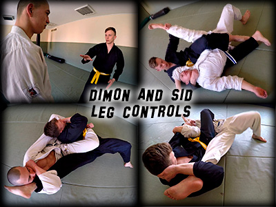 Dimon Sid Leg Controls