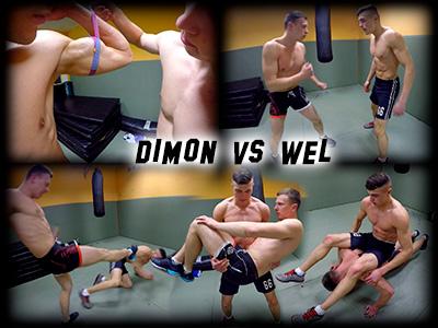 Dimon vs Wel