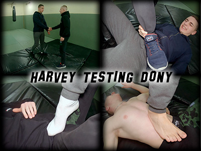 Harvey testing Dony
