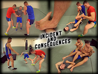 Incident and Consequences