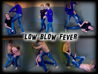 Low Blow Fever